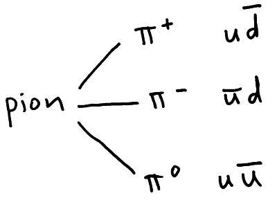 pion quarks