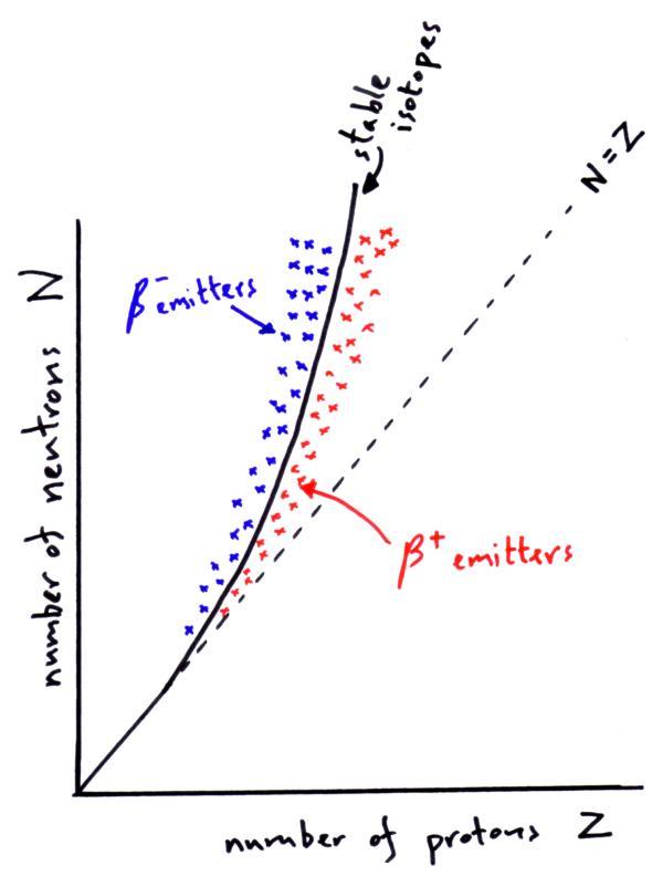 protons neutrons and electron diagram of einsteinium